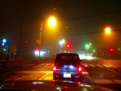 ★しかし今日は市内霧だらけ、珍しいねぇ